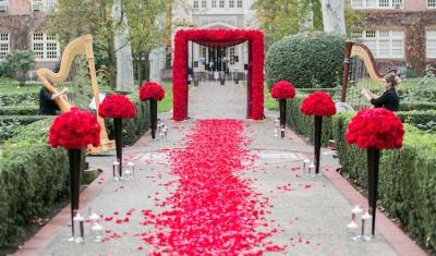 luxury-proposal-idea