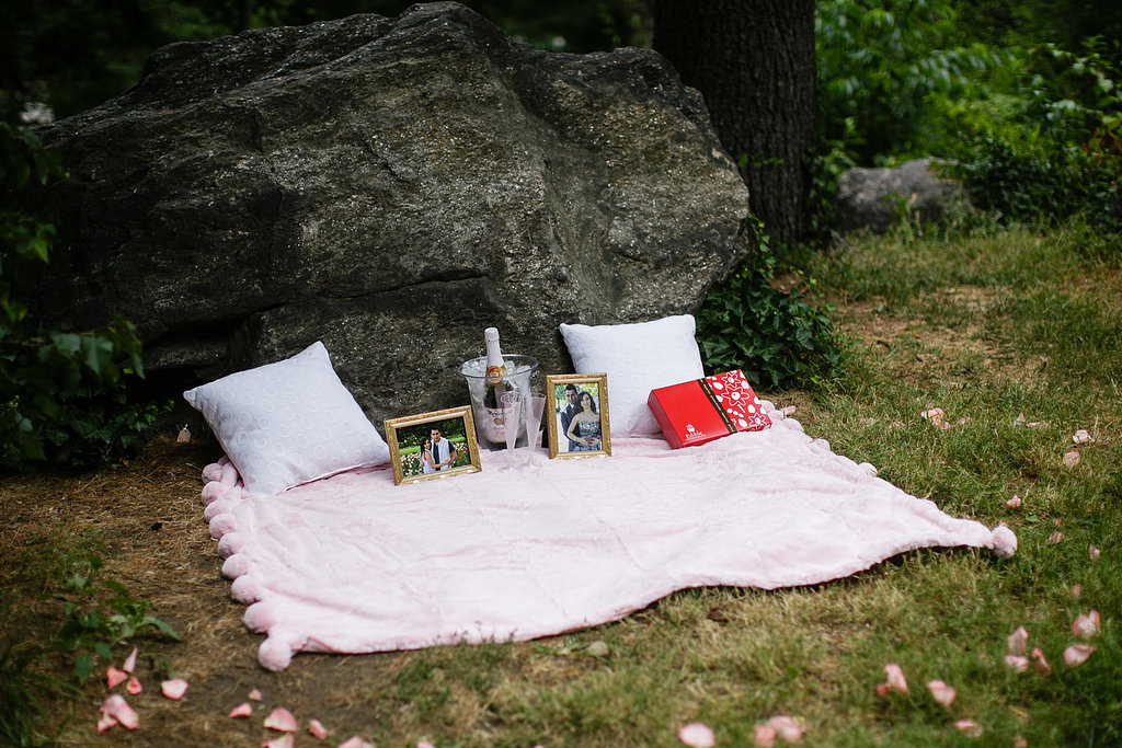 Central-park-picnic.jpg