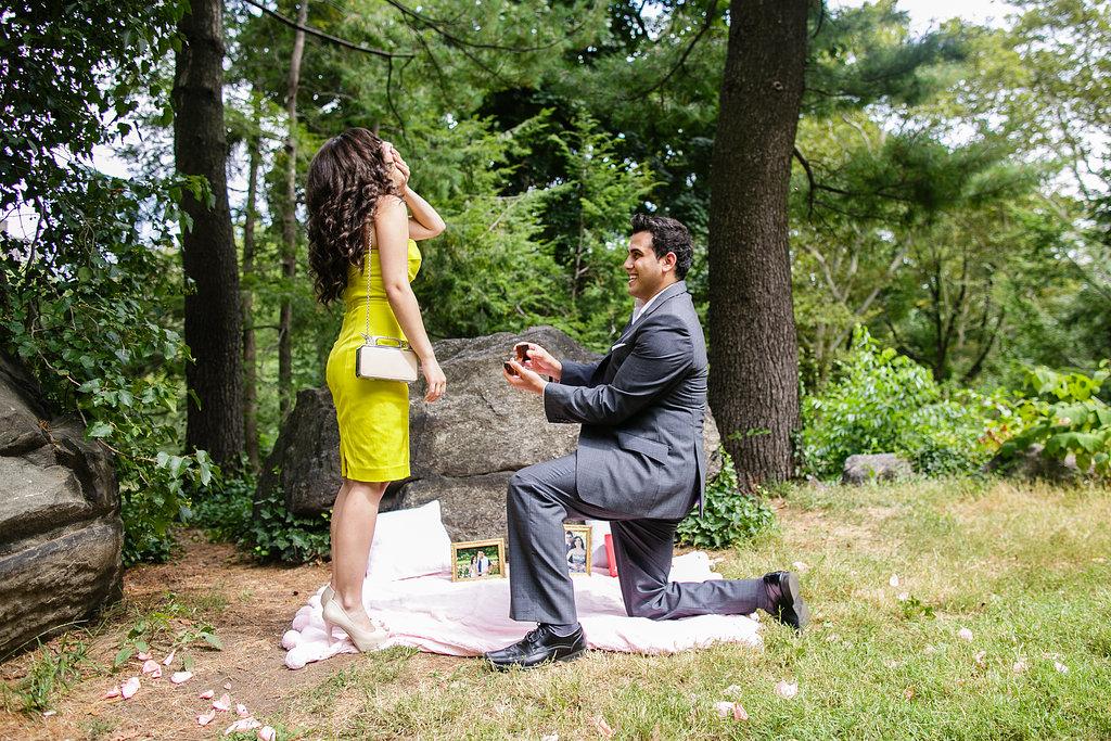 Romantic-Picnic-Central-Park.jpg