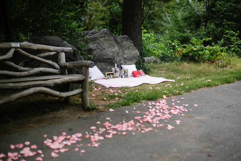 central-park-picnic-proposal-setup.jpg