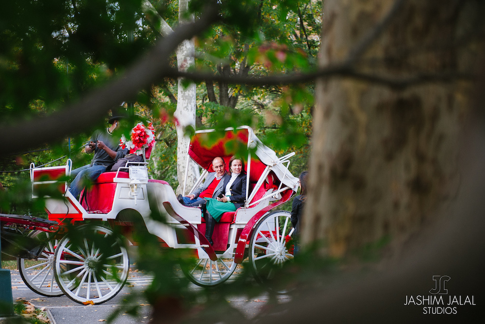new-york-horse-carriage-proposal-idea-1.jpg