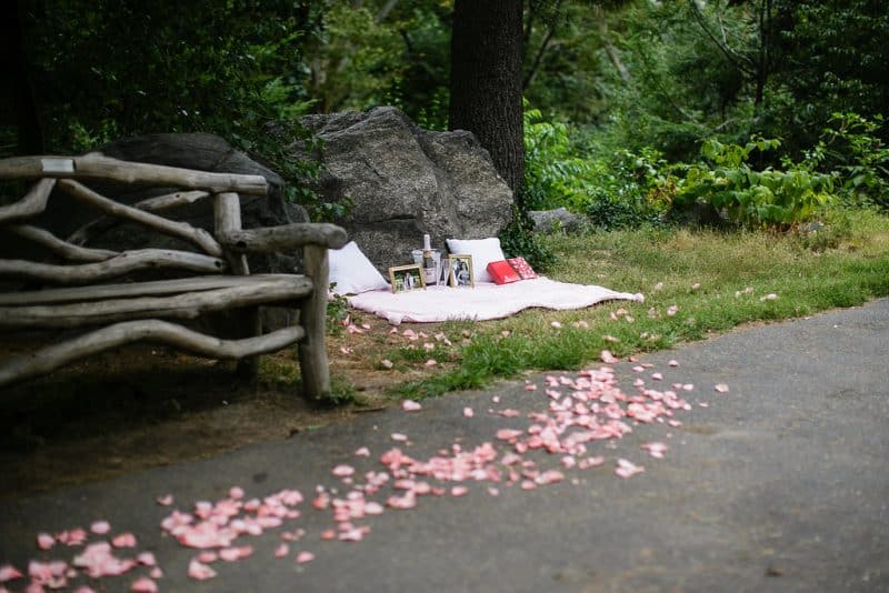 central-park-picnic-proposal-setup-e1490330222170.jpg