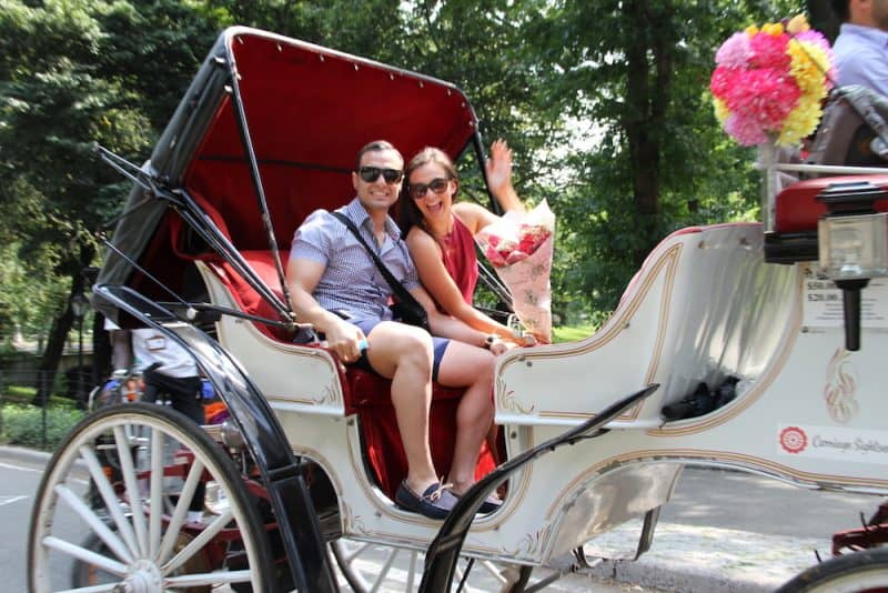 new-york-horse-carriage-proposal-1-e1490330941666.jpg