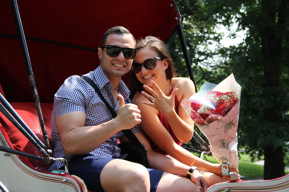 new-york-horse-carriage-proposal-2-1.jpg