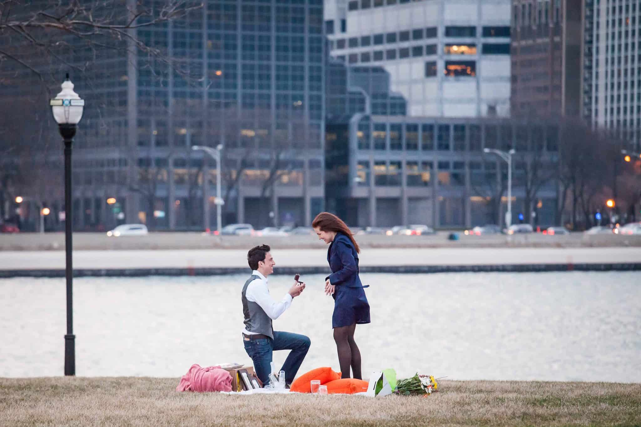 chicago-picnic-proposal-idea.jpg
