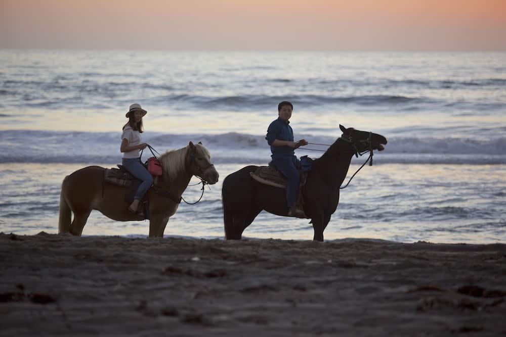 san-diego-beach-horseback-proposal-1.jpg