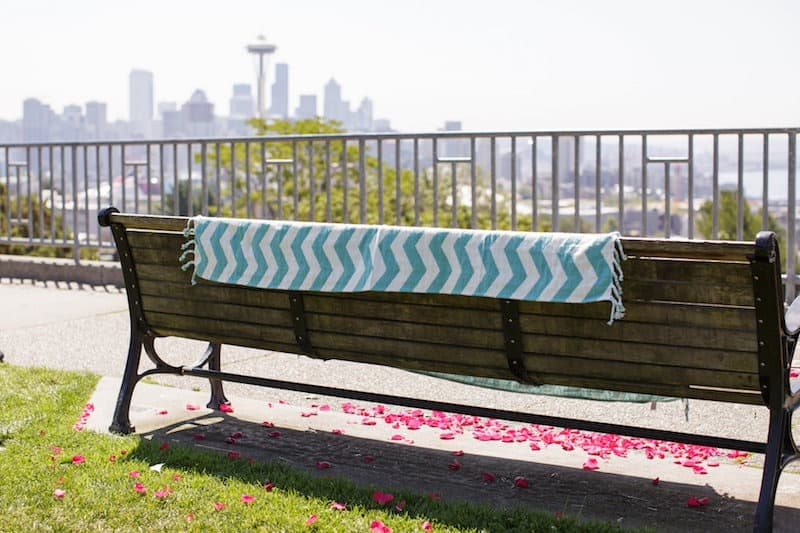 seattle-picnic-proposal.jpg